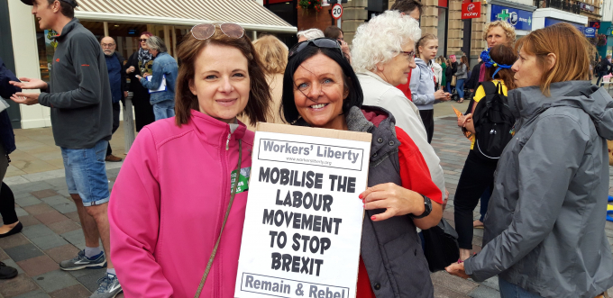 Tracy and one other person at a demonstration, with anti-Brexit placards