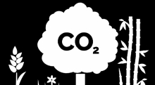 CO2 cartoon