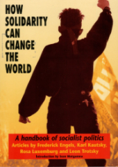 "Book Cover ""How Solidarity Can Change the World"" to the left of a figure standing defiantly with his fist in the air."